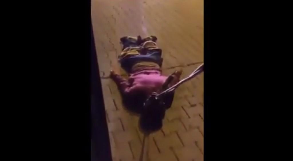 HDP Şırnak Milletvekili Leyla Birlik'in kayınbiraderi Hacı Lokman Birlik'e ait olduğu belirtilen cansız bedeni zırhlı araca bağlanmış olarak yerde sürüklenirken görüntüleyen videoya polislerin küfürlü konuşmaları da yansıdı