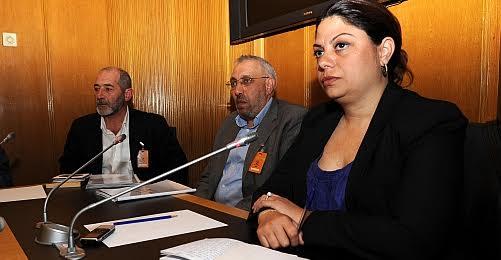 Zeynep Altıok'un, 2012'de Sivas davasına ilişkin TBMM İnsan Haklarını İnceleme Komisyonu'na katılması