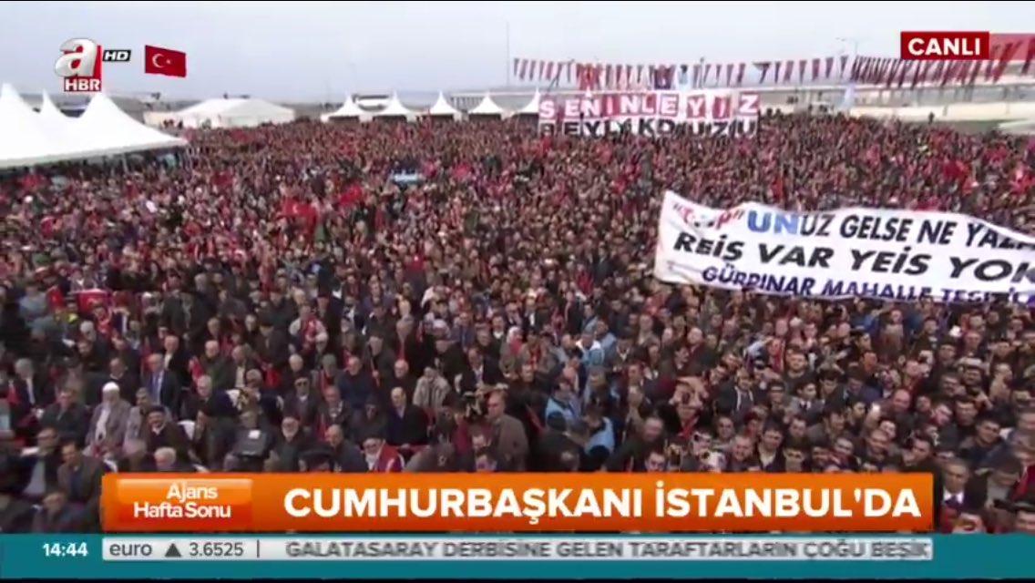 Erdoğan'ın AP'ye yönelik