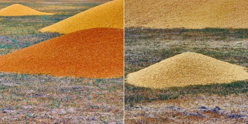 Eskişehir'in hemen batısında yer alan Satılmışoğlu Köyü'nd e buğday harmanından görünümler. Köyde mahsulün ve saman balyalarının geçici olarak depolandığı arazide buğday yığınları. (2015)