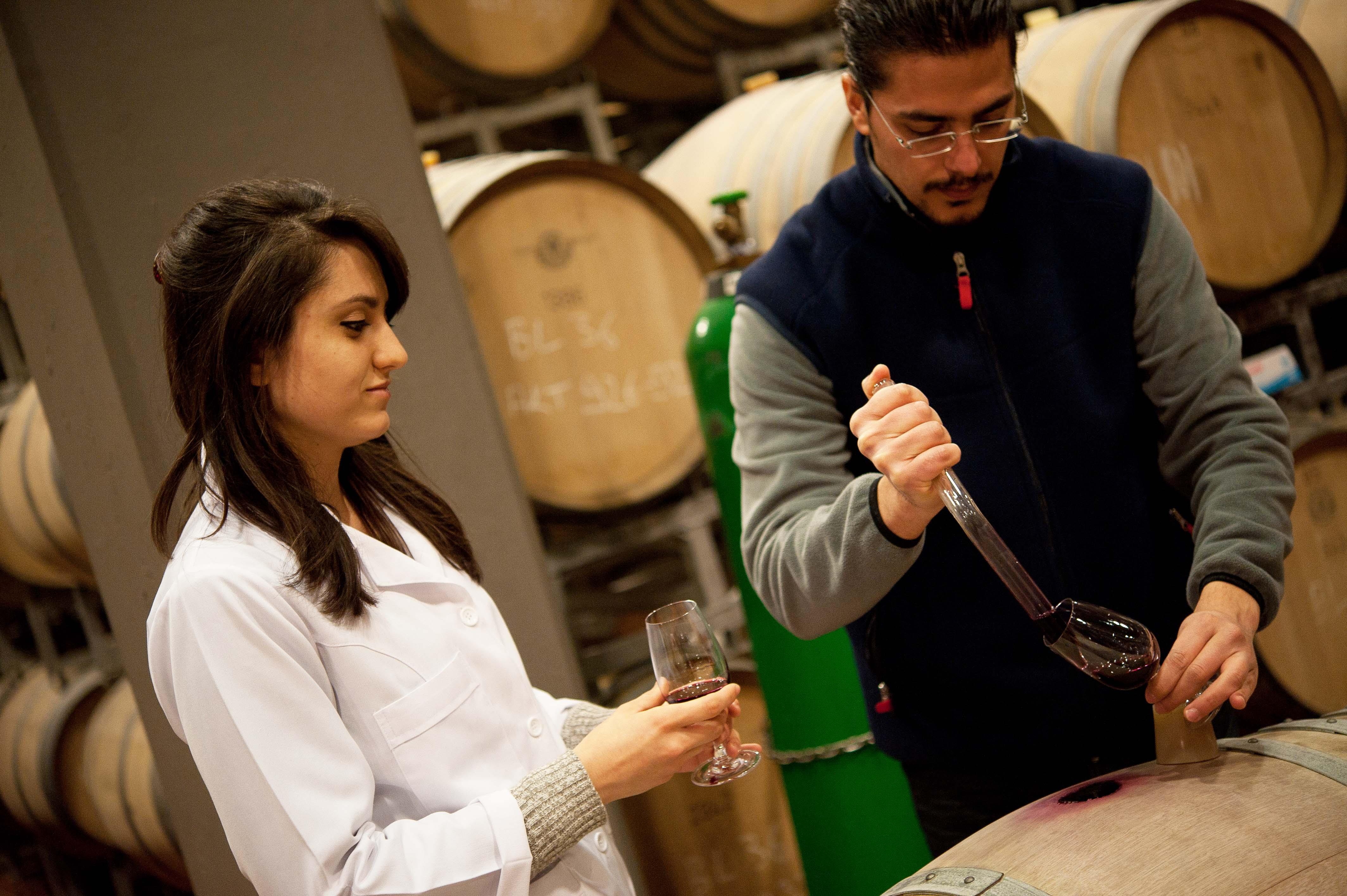 Türk şarapçıları farklı ham şarapların birbirleriyle harmanlandığı kupaj uygulamasın da da ustalaştılar.
