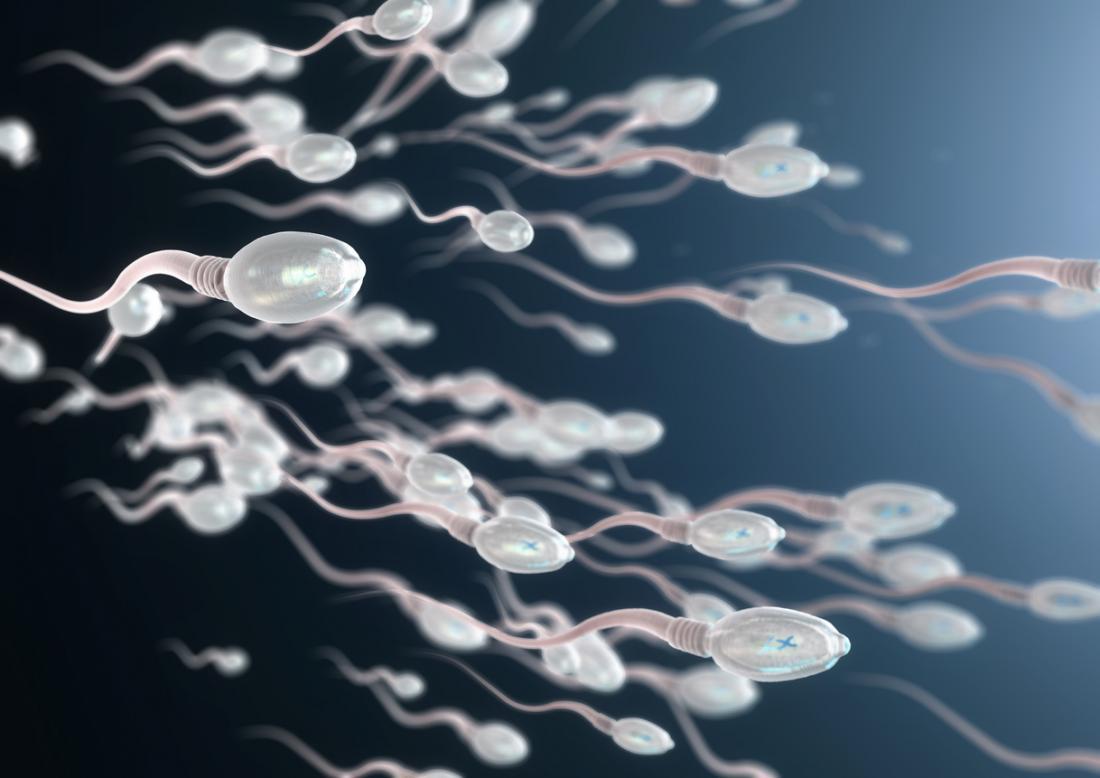 """""""Avrupa'da en yüksek sperm sayıları İngiltere ve Danimarka'ya ait. İspanya'da ise diğer ülkelere göre belirgin biçimde düşük sperm sayılarının olduğu görülüyor"""""""