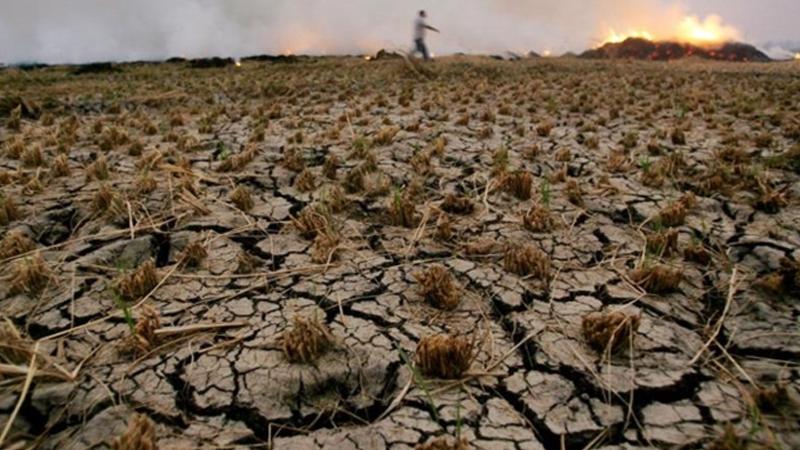 Çölleşme ve kuraklık uyarısı: Arazilerin yüzde 47'si çölleşme riski altında
