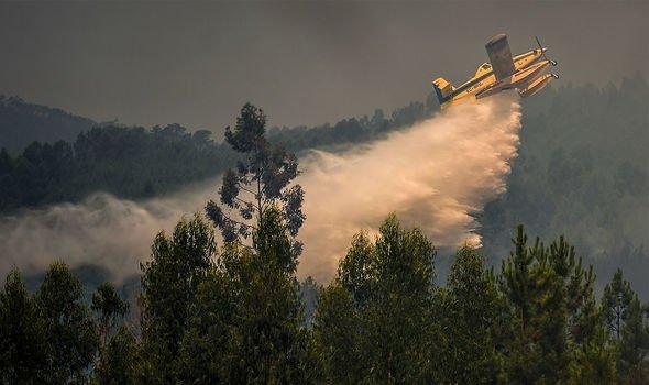 Ormanda devam eden yangını söndürmek için görevlendirilen ekibe 300'den fazla itfaiye aracı ve 17 uçakla destek veriliyor. İspanya, komşu ülkesine destek vermek için Pazartesi günü iki hava aracını bölgeye yolladı.