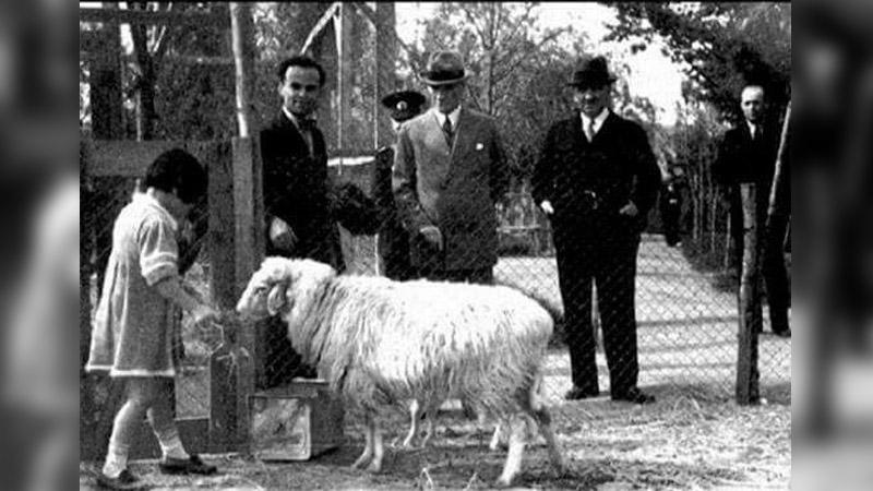 Atatürk, kurban