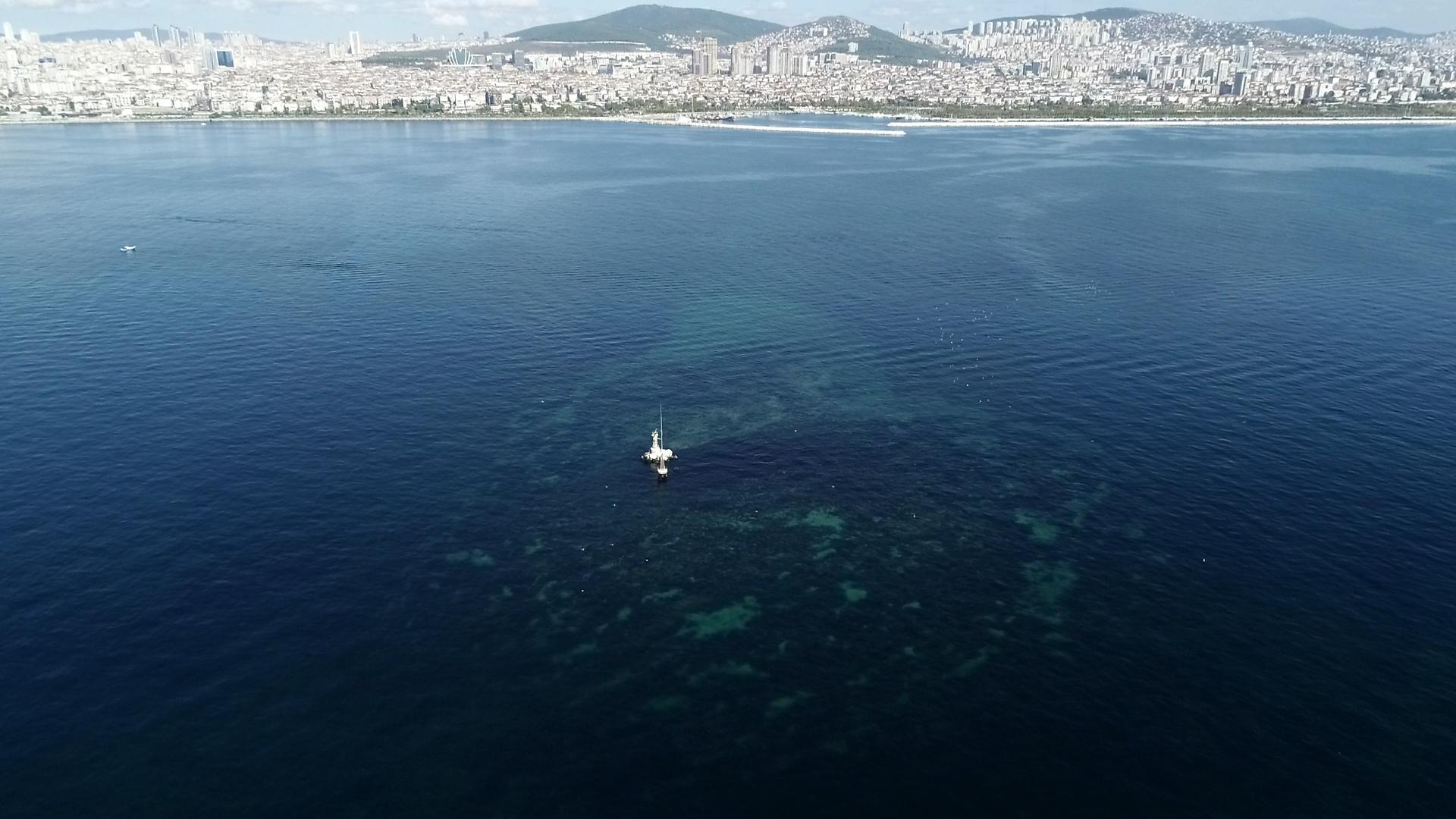 Vordonisi Adası'na yapılan keşif dalışlarında yer alan Prof. Dr. Şener Üşümezsoy, su altında gördüklerini de anlattı.