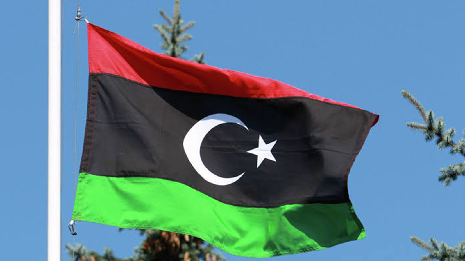 Палата представителей Ливии призвала ООН остановить поток сирийских наемников в страну
