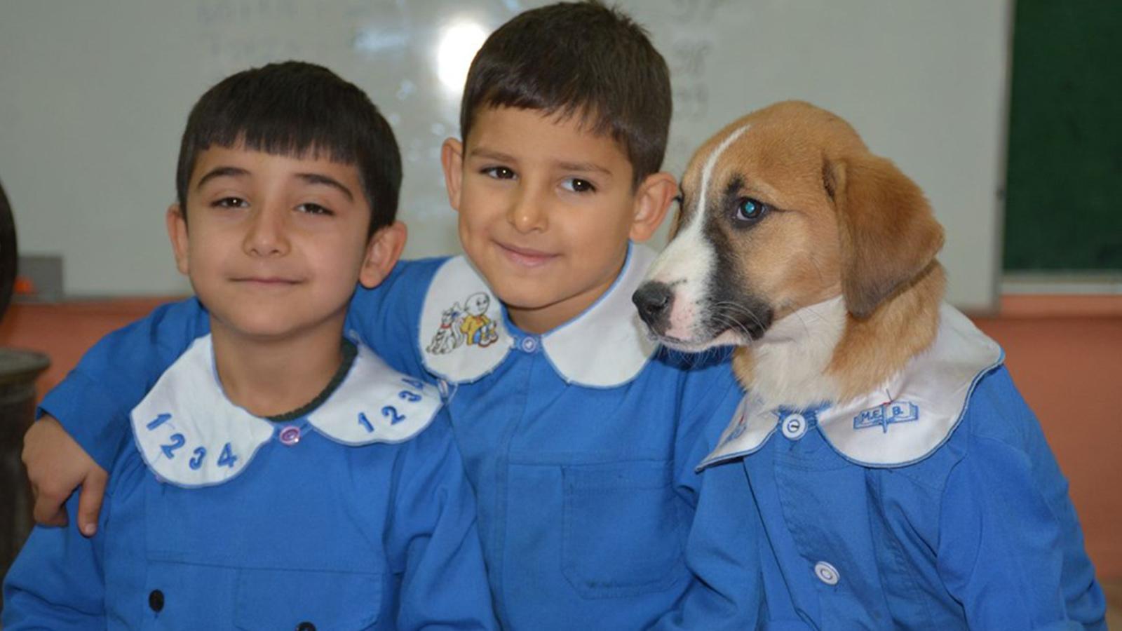 Tokat'ta mezarlıkta kimsesiz bulunan Fındık adlı yavru köpek, ilkokulda maskot oldu. Öğrenciler önlük giydirdikleri Fındık'a büyük ilgi gösterdi.