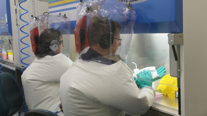 Avustralyalı bilim insanları Koronavirüs aşısı denemelerine başladı