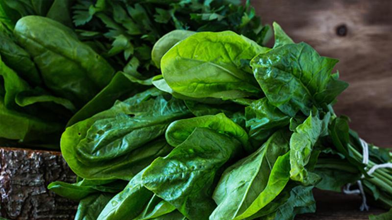 spanak C vitamini, antioksidanlar ve beta karotenden oldukça zengin bir sebze. Bağışıklık sistemi için son derece önemli olan bu içerikleri nedeniyle ıspanağı beslenme listenizden eksik etmeyin. Brokoliye benzer şekilde, besin değerini korumak için ıspanağı da mümkün olduğunca az pişirmeye özen gösterin.