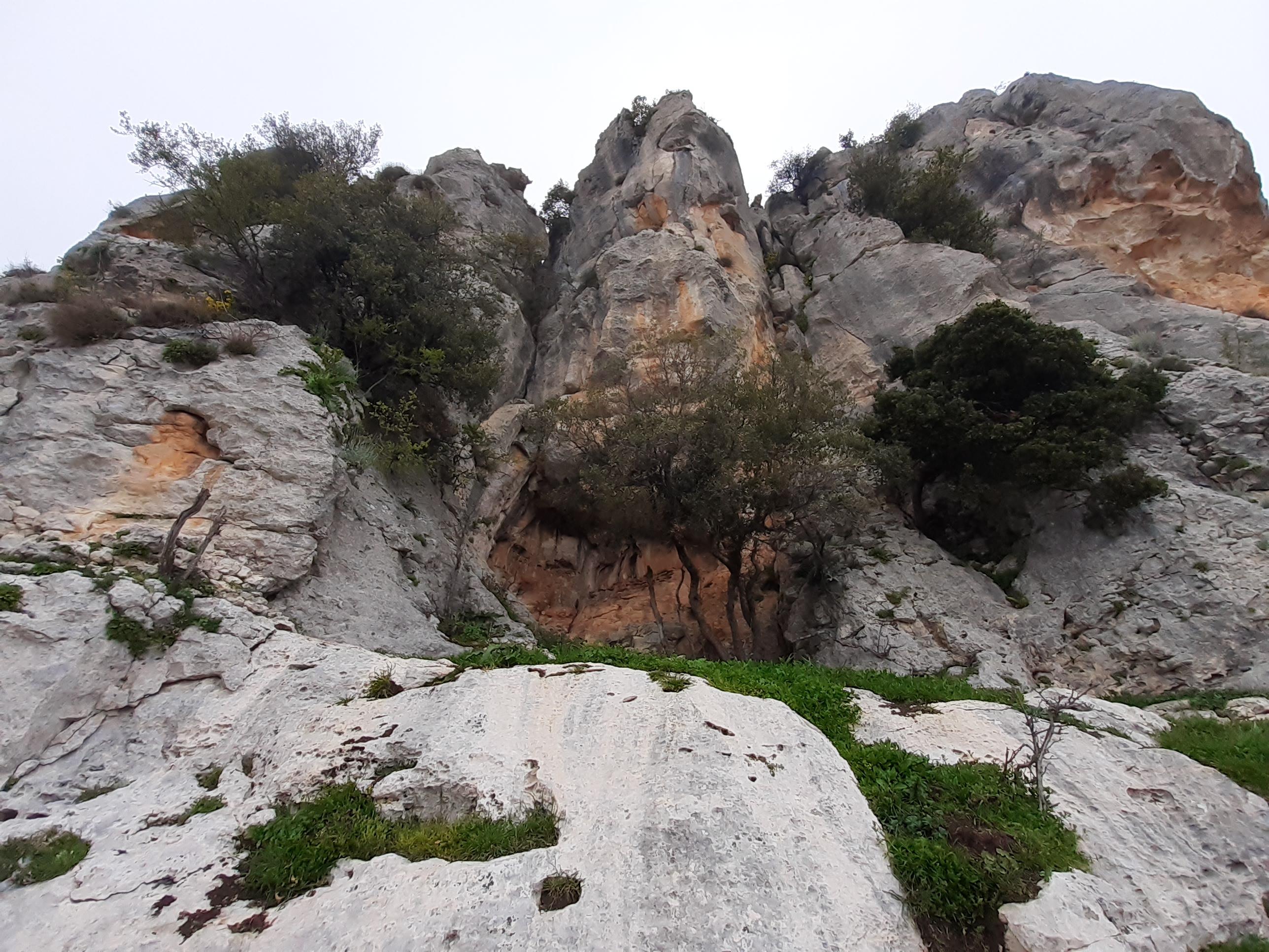 """Resimlerin gerçekçi bir üslupla çizildiğini kaydeden Prof. Dr. Durukan, """"Mersin'e 20 kilometre uzaklıkta İnsu köyünde çok kısa süre önce keşfedilmiş olan kaya resimlerinin önündeyiz. Bunlar günümüzden yaklaşık 5 ila 8 bin yıl öncesine ait olduğunu tahmin ettiğimiz, petroglif tekniğiyle dediğimiz kaya yüzüne kazıma tekniği ile yapılmış olan, dönemin faunasını anlatan kaya resimleri. Çok gerçekçi üslupla yapılmış betimlemeler. Hayvan çeşitliliği hakkında birtakım ipuçları veriyor. Özellikle dağ keçileri, sanatsal özelliği olan ince bir zevkle yapılmış, onun yanı sıra bazı fantastik yaratıklar gözümüze çarpıyor. Uçan ve yüzen bazı yaratıklar bunlar"""" dedi."""