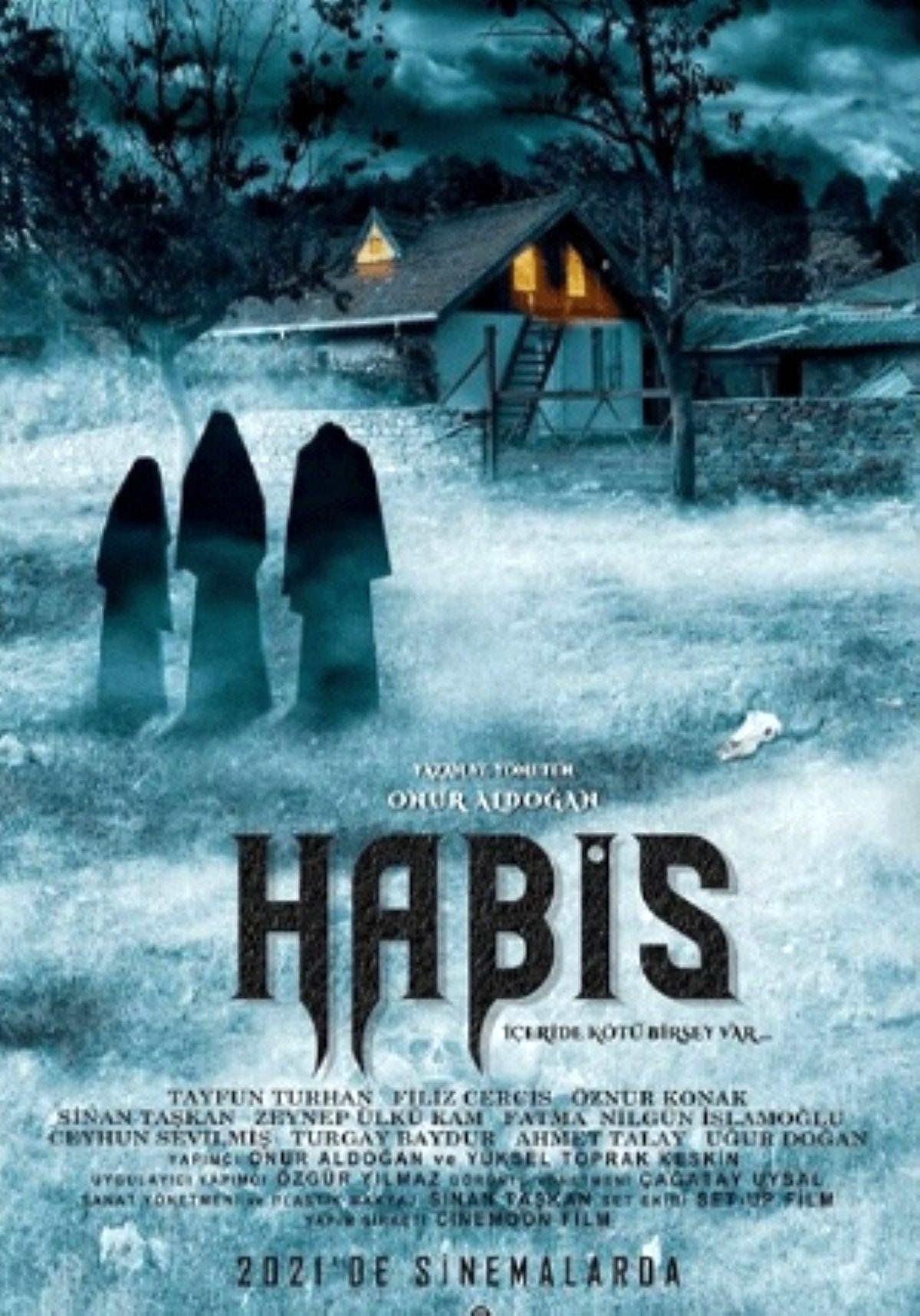 """Yönetmen ve senarist James Wan'ın yeni korku filmi """"Habis"""" filmi, şok edici cinayet görüntüleriyle paralize olan Madison'un hikayesine odaklanıyor. Filmin oyuncu kadrosunda Annabelle Wallis, Maddie Hassos ve George Young yer alıyor."""