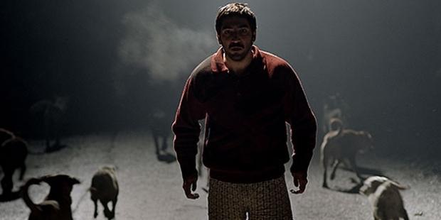 Altın Koza Film Festivali'nin kazananları belli oldu