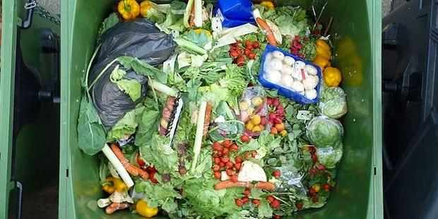 Türkiye, her yıl 214 milyar lirayı çöpe atıyor!